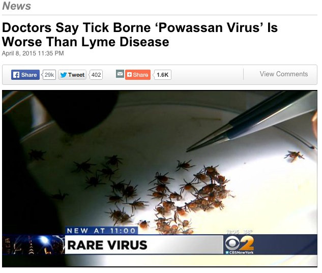 Click for CBS News story on Powassan virus in Connecticut.