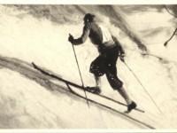 How Many Subscribers Ski Over 30 Days A Season?