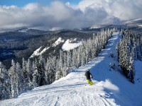 A skier heads off the top of Great White Express at White Pass.  Credit: John Nelson