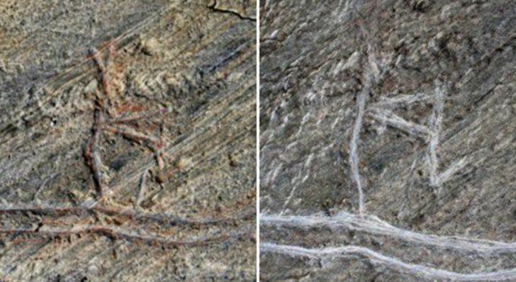 Vandals Destroy World's Oldest Skier Image