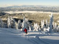 Skiing fresh powder at Brundage Mountain. Credit: Brundage Mountain.