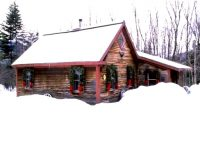 Tucked in the woods, this is a cozy cabin. No bears, too! Credit: Homeaway