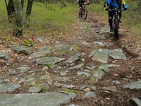 Trails at Rothrock require some technical skills. Credit: Pat McCloskey