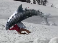 Don't go near the...snow. We've heard of snow snakes but this is ridiculous.