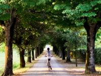 Tuscany and Umbria on E-Bikes