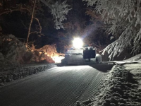 NSNA Crew grooms all night for a wonderful trail in the morning. Credit: NSNA
