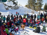 Avy dog demos were a big hit at Sierra-at-Tahoe. Credit: SkiCalifornia