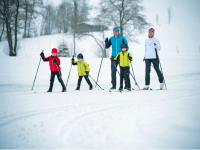 Tips On Starting Nordic Skiing