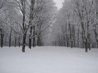 Snow In Literature: The Snow Man