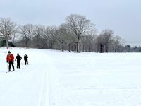 There's a groomed trail, but lots of folks just went their own way across the pasture at Appleton Farms. Credit: A. Maginn