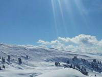 Vicarious Ski Run In The Swiss Alps: Fun Or Foolish?